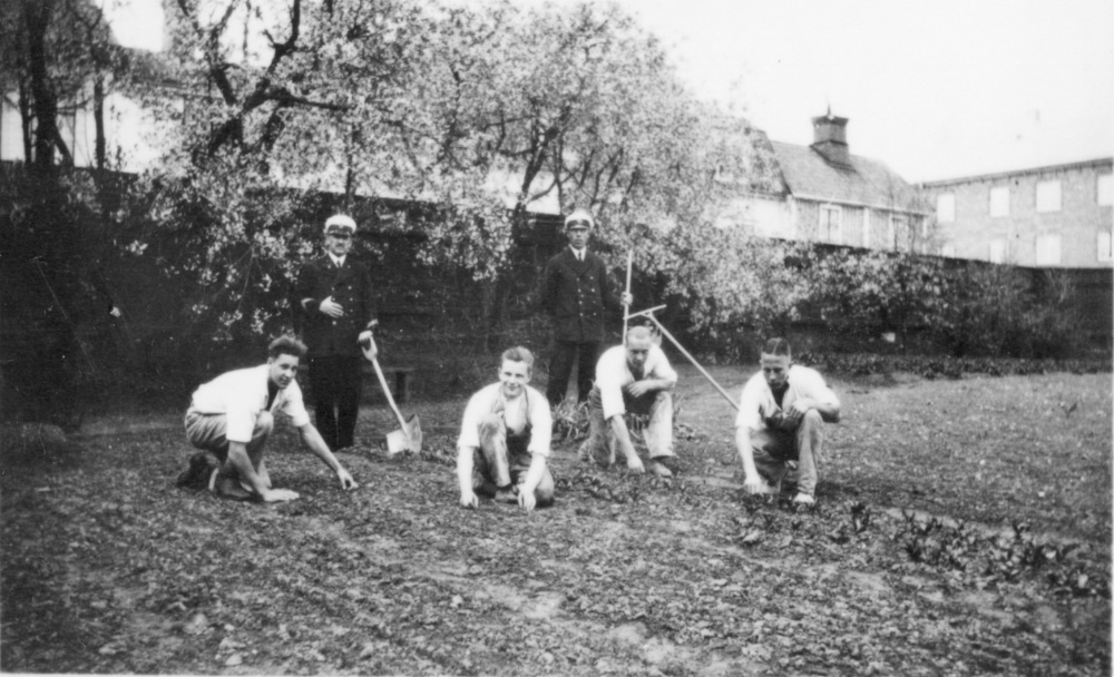 SvFm fångar i trädgården
